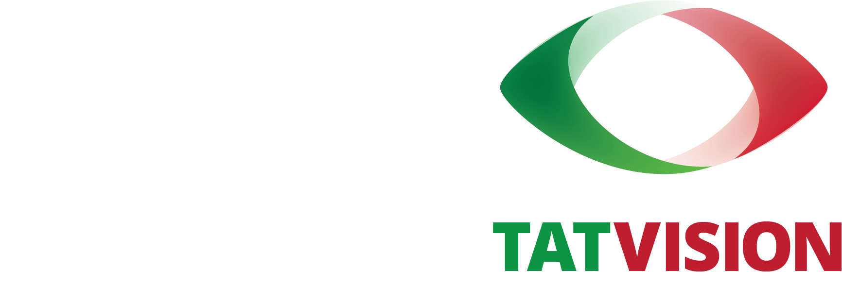 Татвижн